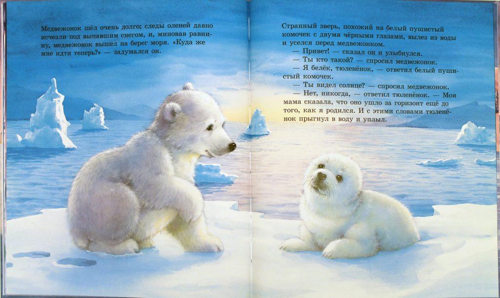 медвежонок и белёк