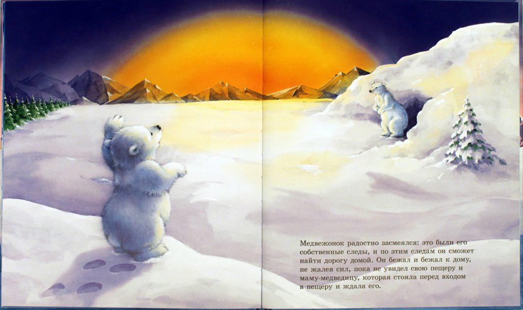 медведь и солнце
